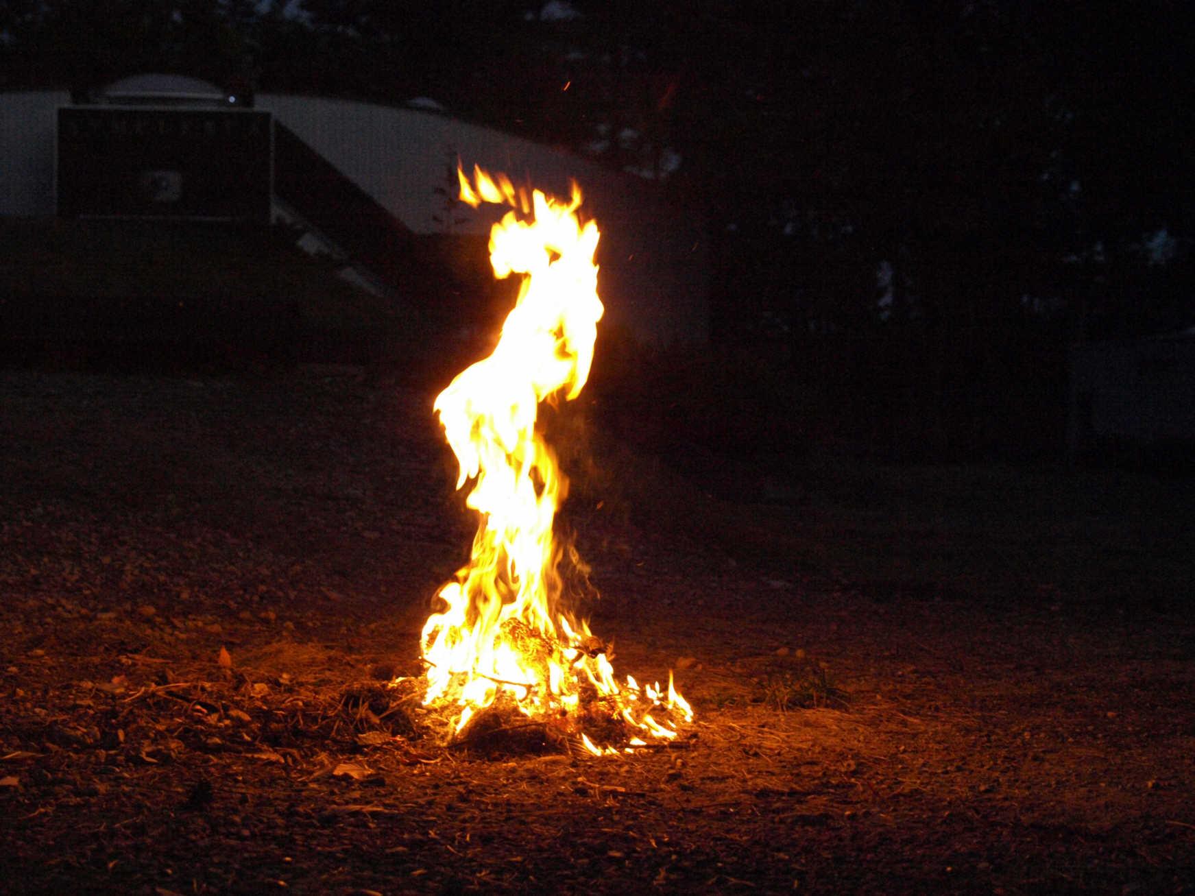 焚き火1114c.jpeg